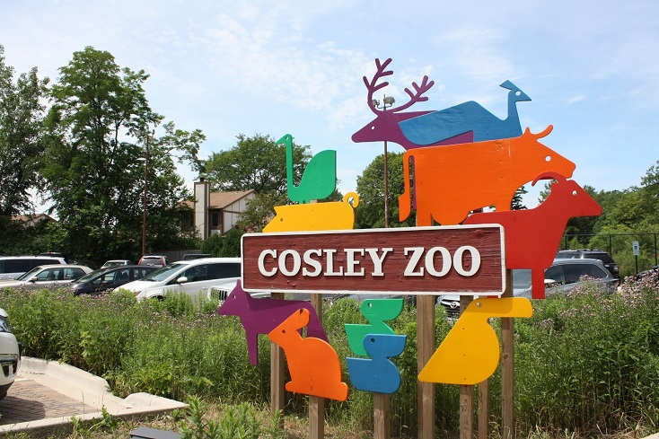 Cosley Zoo Presents Critter Class
